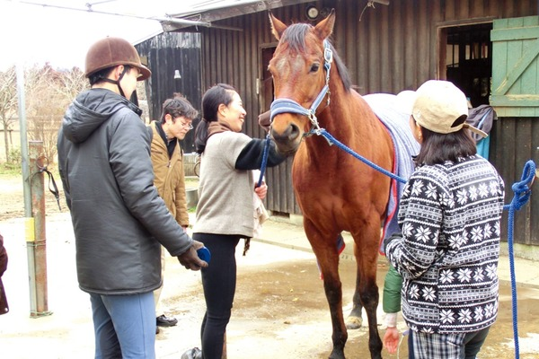 馬に対しても人に対しても、幸せを願う引退馬協会