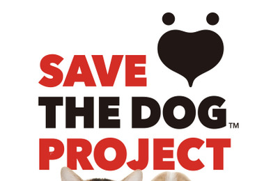 THE DOG COMPANY、犬や猫を支える支援活動「SAVE THE DOG PROJECT」を発足