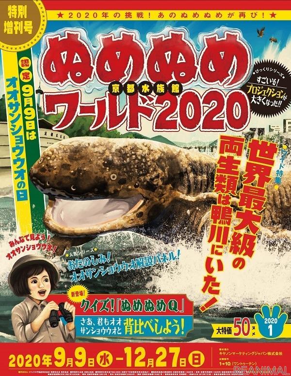 オオ サンショウウオ 水族館 京都