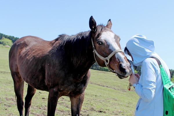 馬と人の喜びをつなげる活動