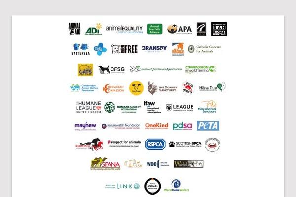 「多くの団体の数百人にわたるスタッフとともに作成した」RSPCAの提言