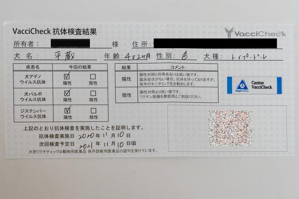 獣医師から発行される抗体検査の結果証明書