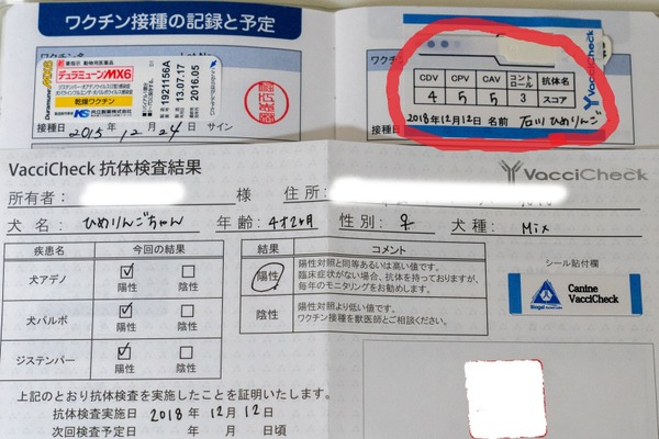 少量の採血で診断可能な抗体検査キット