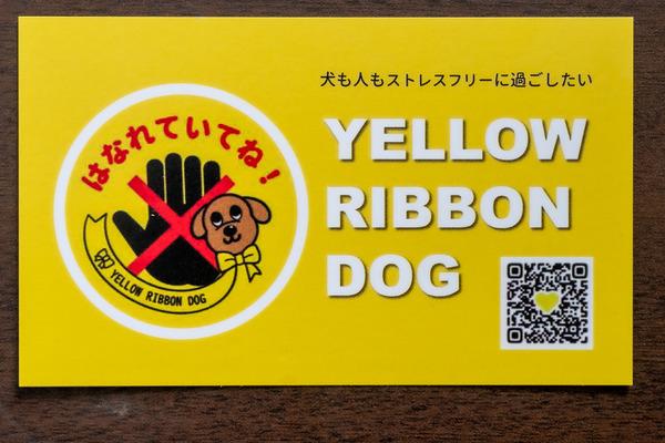 分かりやすく説明できるよう、気遣いの黄色いカードで