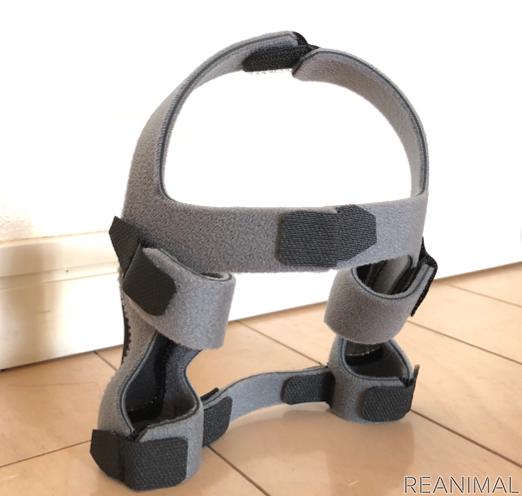 肩関節を強制するブレース