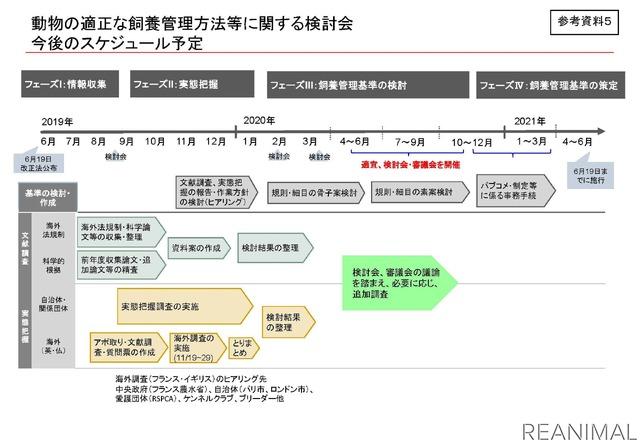 改正愛護法第21条に関する環境省令作成スケジュール