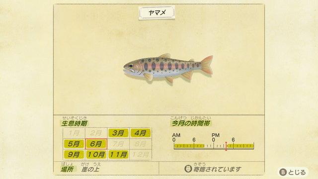 7月の魚 あつまれどうぶつの森