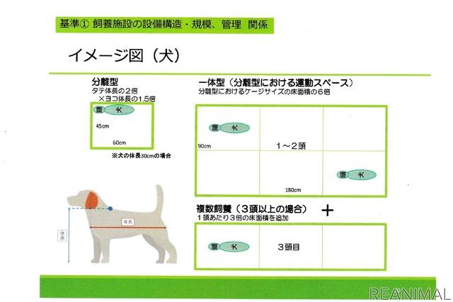 犬の飼育スペースイメージ